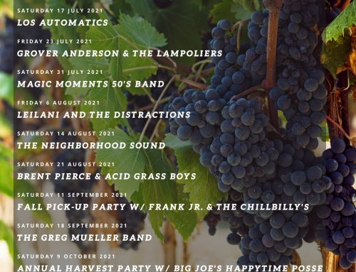 Concerts in the Vineyards